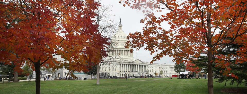 Fall foliage is on display in front of the U.S. Capitol on Oct. 30, in Washington.