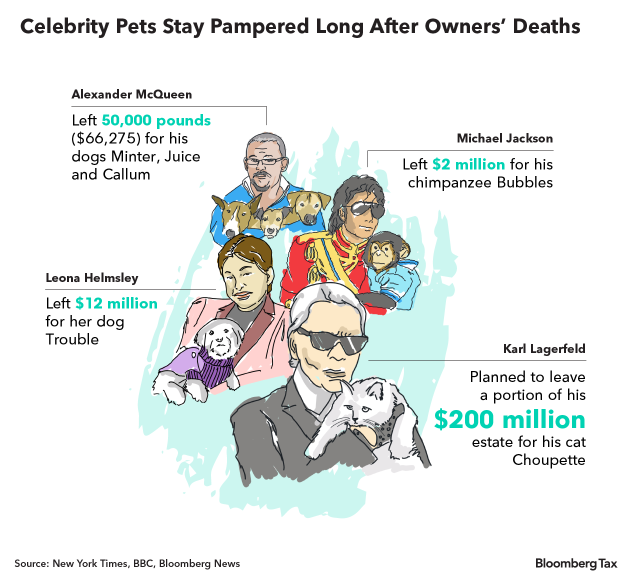 Lagerfeld's Cat Won't Get Her Paws on His Fortune  France Will