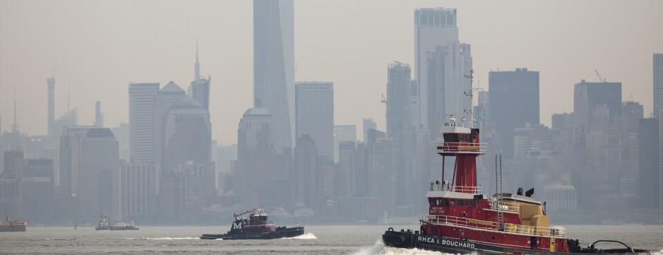 D.C. Circuit Closes Book on Ozone Standards Litigation