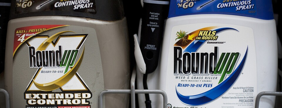 Bayer Deal Pays Roundup Plaintiff to Keep Fighting in Court (1)