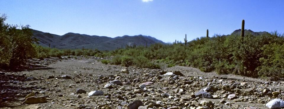 Arizona Prepares to Lose Federal Water Protections