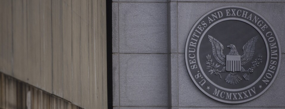 INSIGHT: New York Courts Grapple with Influx of Securities