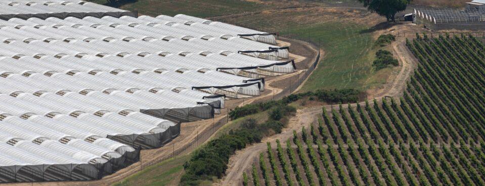Cannabis production - California 9-13-21