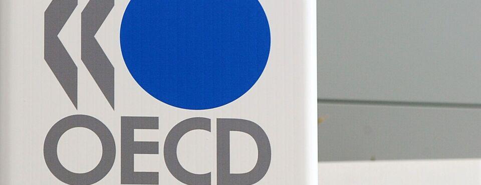OECD-Argentina criticizes global tax paln