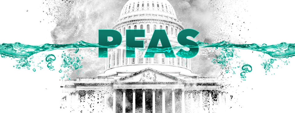 Forever Litigation: The PFAS Project - cover