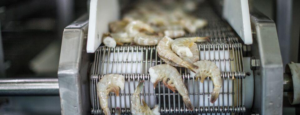 Vietnamese Companies Win Lower U S  Duties on Frozen Shrimp
