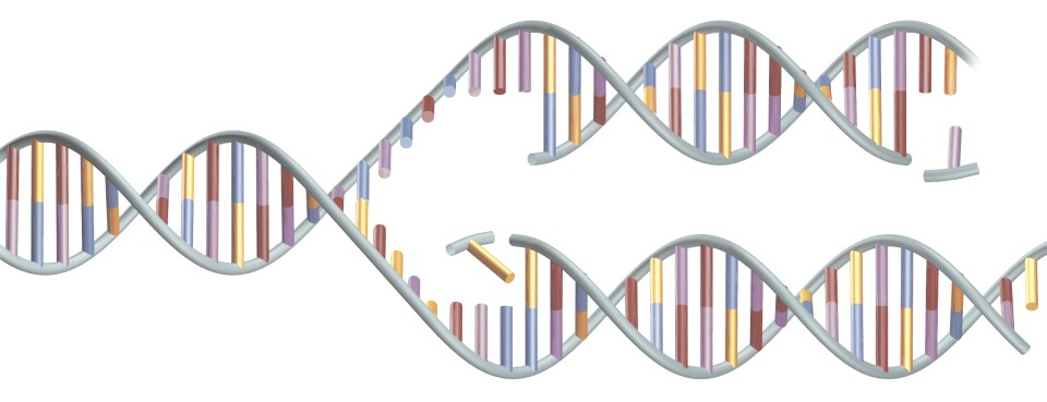 Natera Opens New Front in Prenatal Test Battle With Illumina