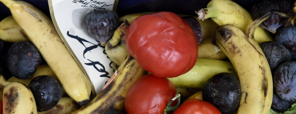 About 14% of All Food Wasted, Compounding Climate Change, UN Says