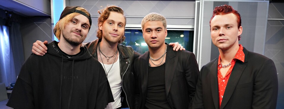 5 Seconds of Summer Hit Allegedly Copied From Hungarian Pop Song