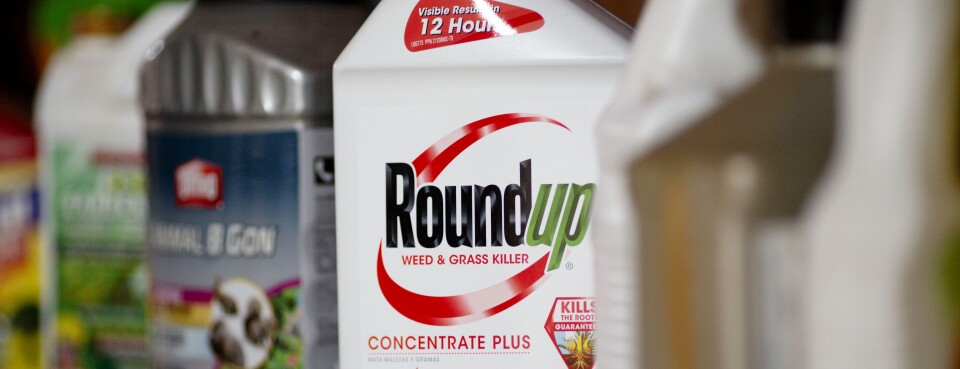 Bayer Fights Jury Loss in Bid to Minimize Roundup Payouts (1)