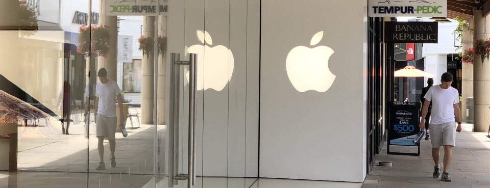 Apple B-1 Visa Fraud Appeal Dropped by California Whistleblower