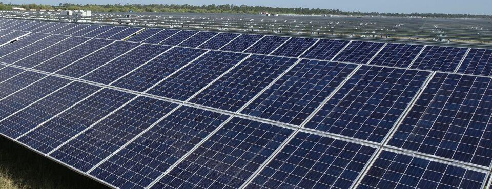 Solar Power in Flor