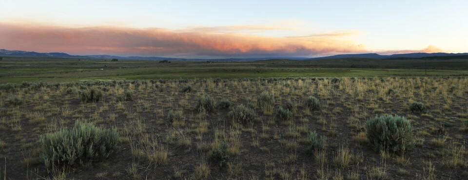 Utah wildfire rangeland